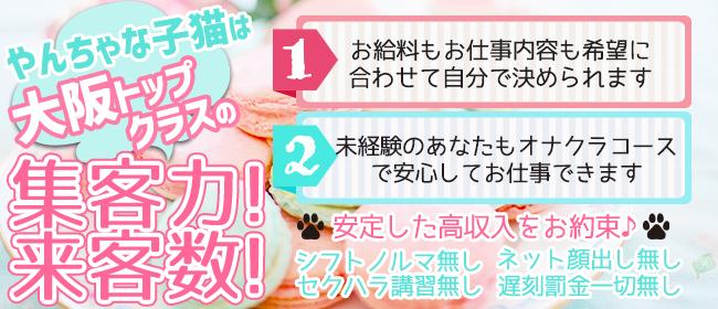 やんちゃな子猫堂山店(梅田)のホテヘル求人・高収入バイトPR画像2