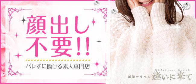 逢いに来て(浜松デリヘル店)の風俗求人・高収入バイト求人PR画像1
