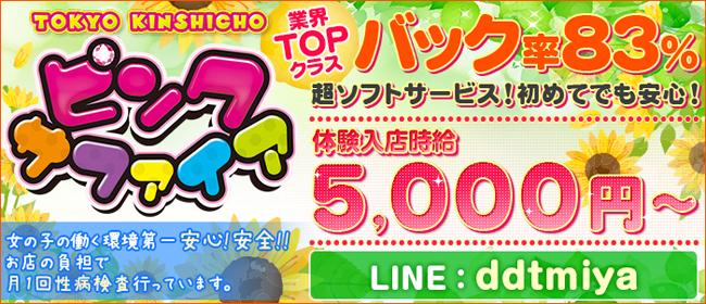 ピンクサファイア(錦糸町ピンサロ店)の風俗求人・高収入バイト求人PR画像1