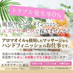 エステドマーニ東京 - 六本木・麻布・赤坂