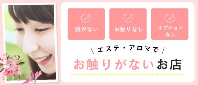 埼玉回春性感マッサージ倶楽部(大宮)のデリヘル求人・高収入バイトPR画像1