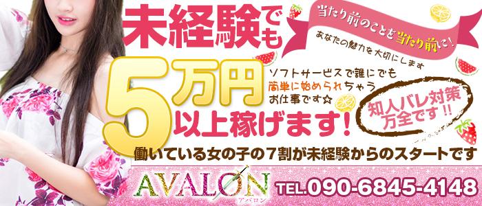AVALON - 広島市内
