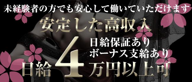 博多美人妻(福岡市・博多デリヘル店)の風俗求人・高収入バイト求人PR画像3