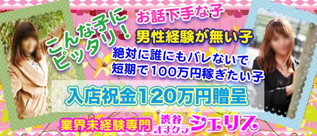 シェリス(渋谷デリヘル店)の風俗求人・高収入バイト求人PR画像3