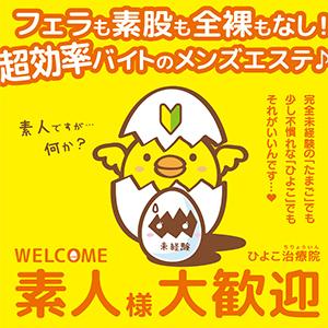 熊本ひよこ治療院 - 熊本市内
