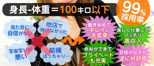 錦糸町ぽちゃカワ女子専門店(錦糸町デリヘル店)の風俗求人・高収入バイト求人PR画像1