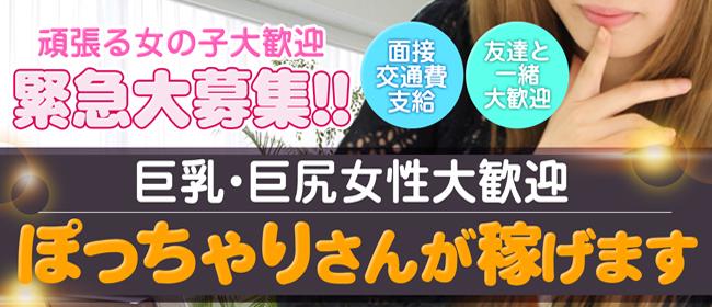 錦糸町ぽちゃカワ女子専門店(錦糸町デリヘル店)の風俗求人・高収入バイト求人PR画像2