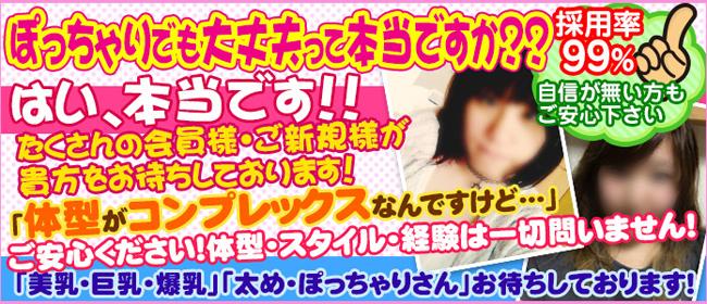 錦糸町ぽちゃカワ女子専門店(錦糸町デリヘル店)の風俗求人・高収入バイト求人PR画像3