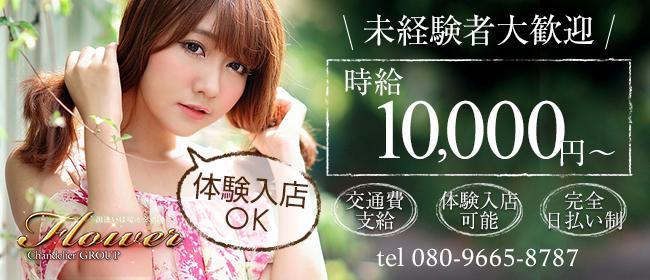 Flower(フラワー)(横須賀デリヘル店)の風俗求人・高収入バイト求人PR画像1