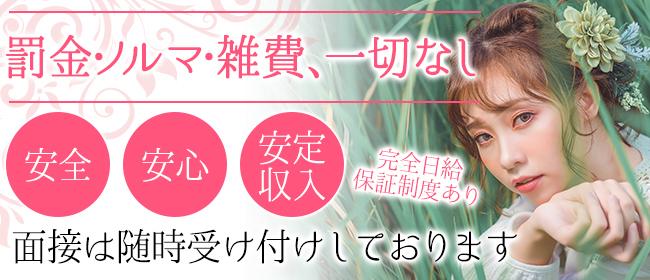 Linda&Linda(梅田デリヘル店)の風俗求人・高収入バイト求人PR画像3
