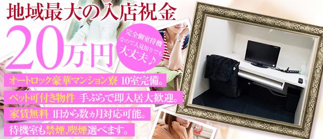 ジェラート(松山デリヘル店)の風俗求人・高収入バイト求人PR画像1