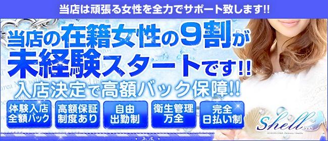 shell☆シェル(広島市内デリヘル店)の風俗求人・高収入バイト求人PR画像1
