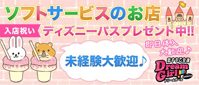 ドリームガール(渋谷ピンサロ店)の風俗求人・高収入バイト求人PR画像2