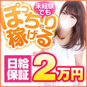 白いぽっちゃりさん 新宿店 - 新宿・歌舞伎町