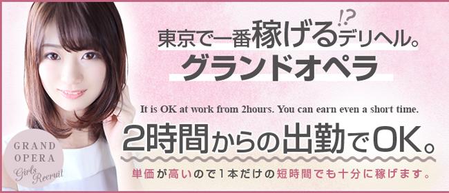 グランドオペラ東京(品川)のデリヘル求人・高収入バイトPR画像2