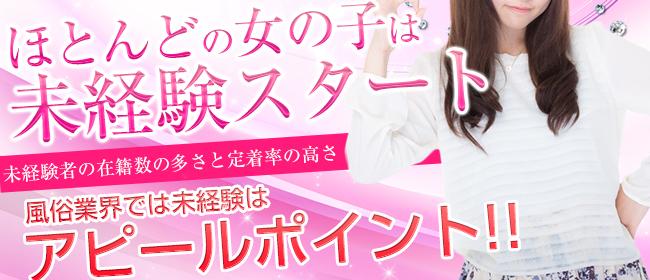 姫路ハーレム(姫路デリヘル店)の風俗求人・高収入バイト求人PR画像2