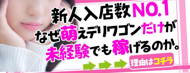 萌えデリワゴン(名古屋デリヘル店)の風俗求人・高収入バイト求人PR画像1