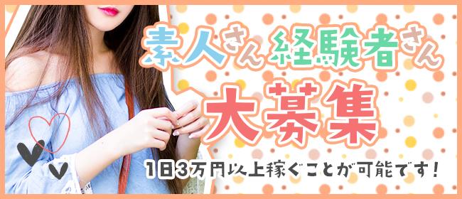 小悪魔フレンズ(新橋・汐留デリヘル店)の風俗求人・高収入バイト求人PR画像1