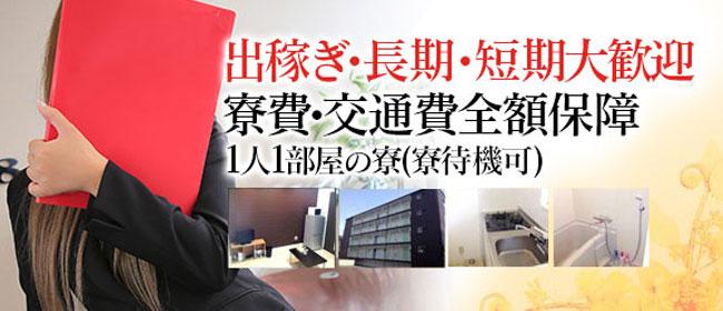 ミセスOLスタイル(サンライズグループ)(岡山市内)のデリヘル求人・高収入バイトPR画像2