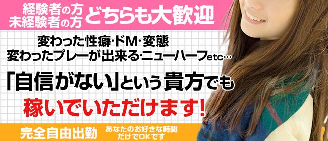 いちゃいちゃパラダイス(福山店)(福山デリヘル店)の風俗求人・高収入バイト求人PR画像2