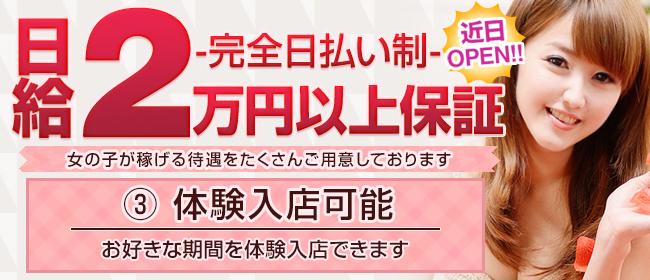 club lip(岡山県その他デリヘル店)の風俗求人・高収入バイト求人PR画像3