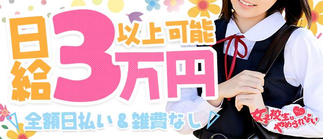 女子校生はやめられない!(難波ホテヘル店)の風俗求人・高収入バイト求人PR画像2