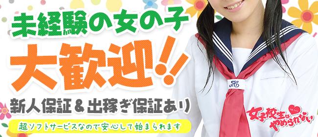 女子校生はやめられない!(難波ホテヘル店)の風俗求人・高収入バイト求人PR画像3