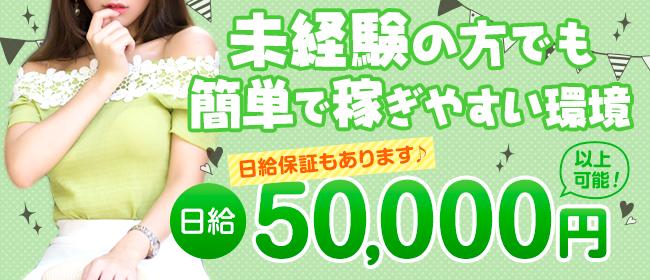 ドッキング痴漢電車(鶯谷デリヘル店)の風俗求人・高収入バイト求人PR画像2