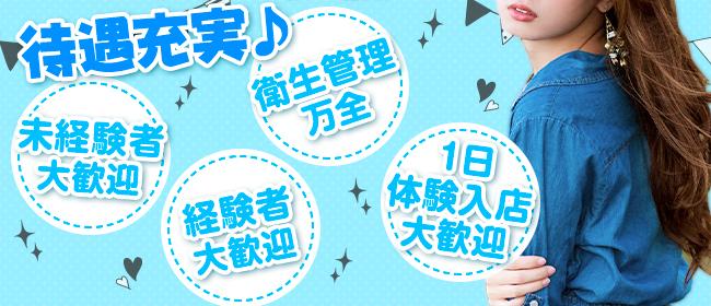 ドッキング痴漢電車(鶯谷デリヘル店)の風俗求人・高収入バイト求人PR画像3
