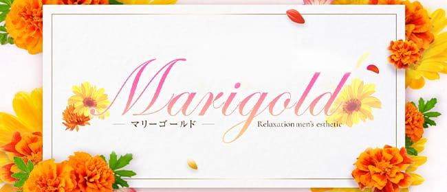 Marigold~マリーゴールド(名古屋)のメンズエステ求人・アピール画像1