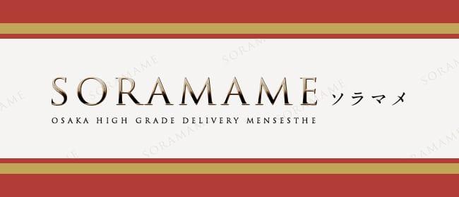 ソラマメ(梅田)のメンズエステ求人・アピール画像1