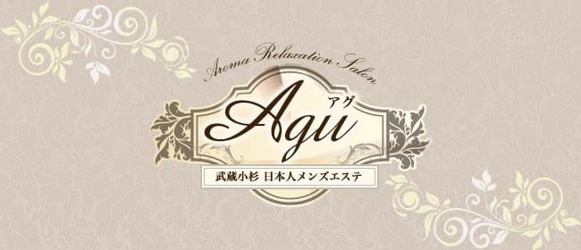 Agu~アグ(武蔵小杉)のメンズエステ求人・アピール画像1