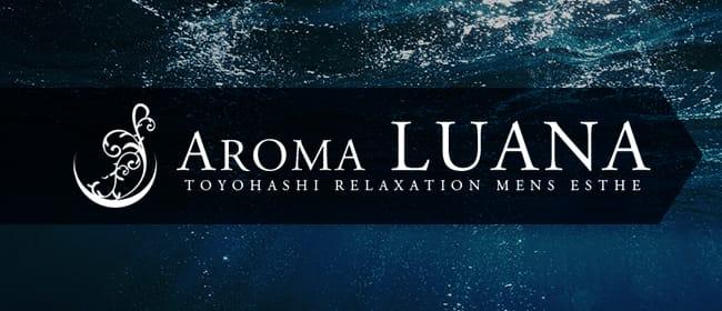AROMA LUANA ~アロマ ルアーナ~(豊橋・豊川(東三河))のメンズエステ求人・アピール画像1