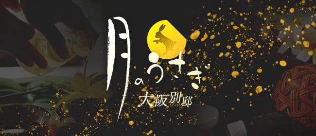 月のうさぎ 大阪別邸(京橋)のメンズエステ求人・アピール画像1