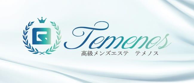 TEMENOS テメノス(戸塚)のメンズエステ求人・アピール画像1