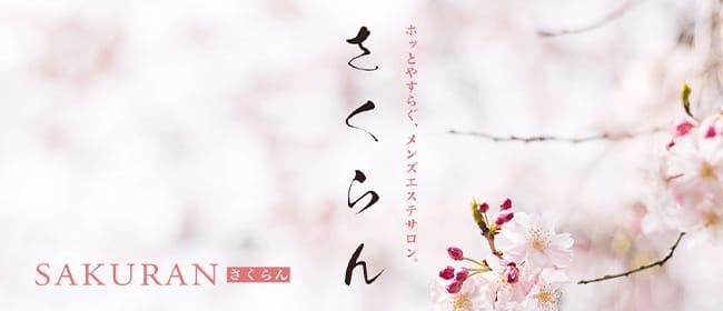 溝の口 日本人エステ さくらん(横浜)のメンズエステ求人・アピール画像1