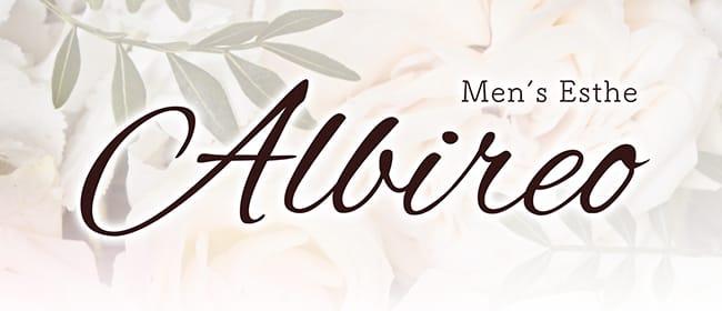 Albireo(アルビレオ)(梅田)のメンズエステ求人・アピール画像1