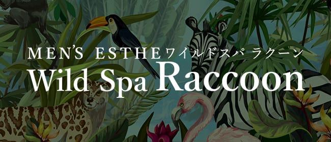 Wild Spa Raccoon(高崎)のメンズエステ求人・アピール画像1