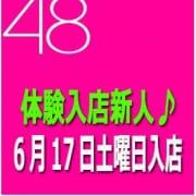 歩美(S組) 人妻総選挙Mrs48 - 松戸・新松戸風俗