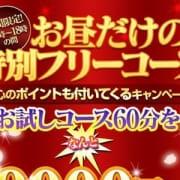 「☆お昼の特別フリーコース☆」11/13(火) 00:30   花の都~人妻の都~のお得なニュース
