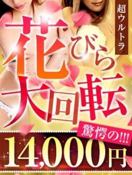 花びら/14000円 | ママらんど宮崎店 - 宮崎市近郊風俗