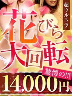 花びら/14000円 宮崎県風俗で今すぐ遊べる女の子