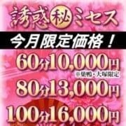 「【今月限定価格】」10/19(金) 19:32 | 誘惑マル秘ミセスのお得なニュース
