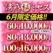 「【6月限定価格】」06/15(火) 13:00 | 誘惑マル秘ミセスのお得なニュース