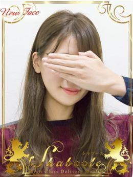 新人・めりさ☆清純派現役モデル | シャブール - 名古屋風俗