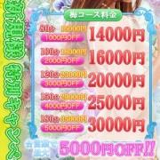 「ご新規特別キャンペーン!!」11/10(金) 16:00 | 宇都宮人妻花壇のお得なニュース