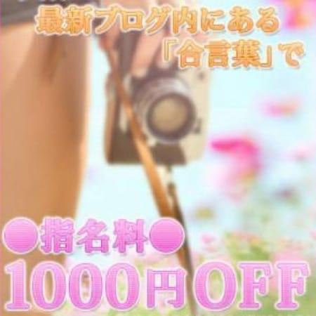 「駅ちか割引!!」02/14(水) 14:53 | 千葉西船橋ムチムチ巨乳妻のお得なニュース