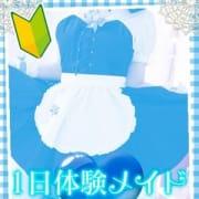 「またまた10代のMっ子『うみちゃん』緊急体験入店でーす!!!」12/09(日) 17:02 | ラズベリードール松山店のお得なニュース