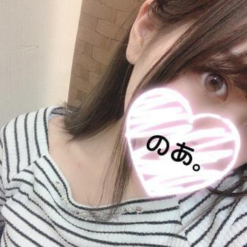 ノア【未経験】