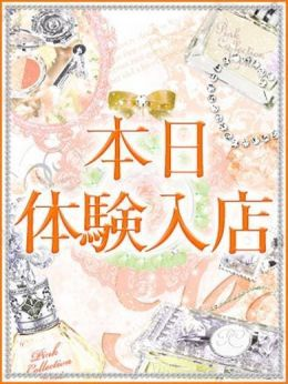 NAMI【未経験・新人】 | ピンクコレクション京都 - 河原町・木屋町風俗